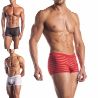 EE01-EE-03 Mens Striped Mesh Boxer Brief Shorts by Fantasy Lingerie