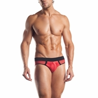 Mesh Brief W/ Contrast - EE06