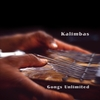 CLICK HERE for Close Out Kalimbas