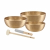 Meinl Energy 3 Singing Bowl Set 3100 g (SB-E-3100)