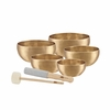 Meinl Universal 5 Singing Bowl Set 2950 g (SB-U-2950)