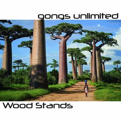 "Wood Gong Stands for 20"" to 48"" Gongs"