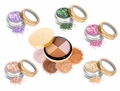 24 Karat Gold Dust & Shimmers