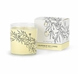 Archipelago Botanicals - Grapefruit Soy Wax Gift Candle in Box
