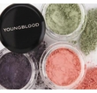 Youngblood - Crushed Mineral Eyeshadow Trial Set