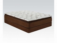 "ACME Cicely 29054-29055 14"" Q CHOCOLATE BAMBOO PILLOW TOP MATRESS AND FOUNDATION SET"