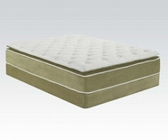 "ACME Cicely 29064-29065 14"" Q SAGE BAMBOO PILLOW TOP MATRESS AND FOUNDATION SET"