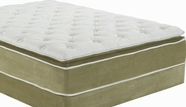 "ACME Cicely 29066-29067 14"" FULL SAGE BAMBOO PILLOW TOP MATRESS AND FOUNDATION SET"