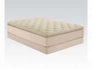 "ACME Cicely 29072-29073 14"" EK BEIGE BAMBOO PILLOW TOP MATRESS AND FOUNDATION SET"