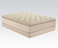 "ACME Cicely 29076 14"" FULL BEIGE BAMBOO PILLOW TOP MATRESS"