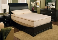 "Coaster 1005Q 13"" QUEEN MATTRESS"