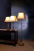 Coaster 901160 3PC SET LAMP