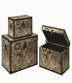 Coaster 950169 STORAGE TRUNK (ANTIQUE BEIGE)