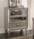 Coaster 950262 ACCENT CABINET (ANTIQUE SILVER)