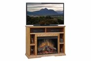 "Legends Furniture CP5104.GDO Colonial Place 49"" Fireplace"