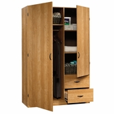 Sauder 413328 Beginnings Storage Cabinet in Highland Oak Finish     A2