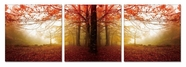 "VIG Furniture VGSC-SH-71210ABC Autumn - 24"" x 24"" Photo on Canvas"