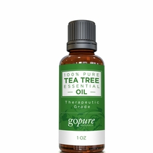 goPure Tea Tree Essential Oil 1oz