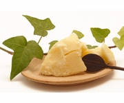 Raw Organic Shea Butter 1 Pound - PRE-ORDER - Ships 12/5 - Unrefined - Ivory - Grade A Highest Quality