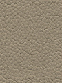 Top Grain Leather, Taupe
