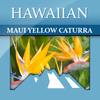 Hawaiian Maui Yellow Caturra