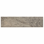 Coloseum Gray Porcelain Bullnose
