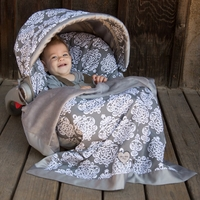 Baby Bella Maya Royal Mist Car Seat Cover & Blanket Set