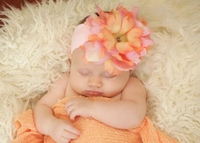 Pale Pink Soft Headband with Pink Orange Small Peony
