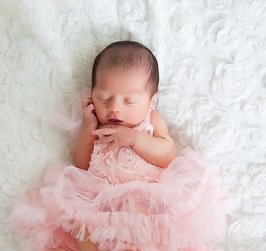 Sweet Heart Rose Pink Rosettes Blossom Tutu Dress