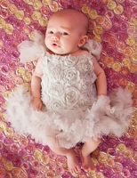 Sweet Heart Rose Silver Baby Blossom Tutu Dress