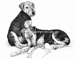 "Airedale Terrier ""Puppies on a Blanket"" Limited Edition Print"
