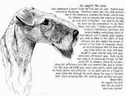 "Airedale Terrier ""So Sayeth"" Limited Edition Print"