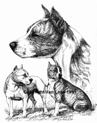 "American Staffordshire Terrier ""Group"" Limited Edition Print"