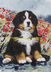 "Bernese Mountain Dog ""Pup and Poppies"" Limited Edition Print"
