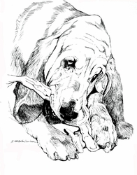 """Bloodhound """"Love My Chewies"""" Limited Edition Print"""