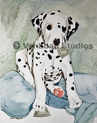 "Dalmatian ""I Can Change A Twenty"""