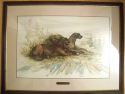 "Irish Wolfhound ""Watercolor Painting by Martha Van Loan"""