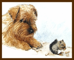 "Norfolk Terrier ""Peanuts"""