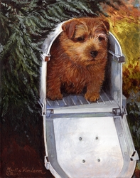 "Norfolk Terrier ""Special Delivery"""