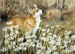"""Pembroke Welsh Corgi """" Daisies And Butterfly"""""""