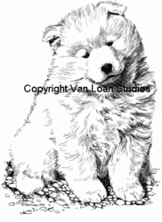 "Samoyed ""Puppy Sitting"""
