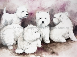 "West Highland White Terrier ""Group of Five"""