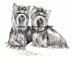 "Yorkshire Terrier ""Pair On The Pillow"""