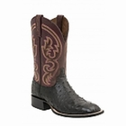 "*NEW* Lucchese Men's ""Josiah"" Black Full Quill Ostrich Leather Horseman Boot M2695"