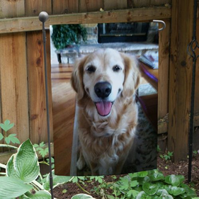 Best Photo Pet Garden Flag
