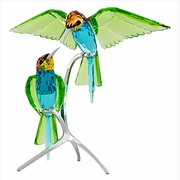 Bee-eaters, Peridot