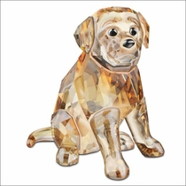 (SOLD OUT) Golden Retriever, sitting