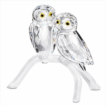 (SOLD OUT) Owls