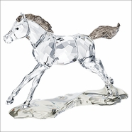 NEW 2014 (IN STOCK) Swarovski SCS Foal 2014 Annual Edition