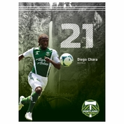 "Portland Timbers Diego Chara 16"" x 22"" Ticket Poster - FINAL SALE"